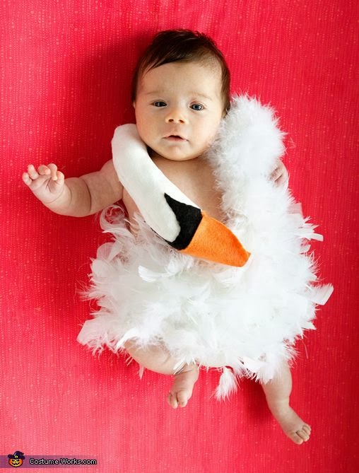 BABY BJORK SWAN DRESS COSTUME / DISFRAZ VESTIDO CISNE BJORK BEBE