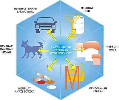 Kegunaan bioteknologi untuk memenuhi kebutuhan manusia