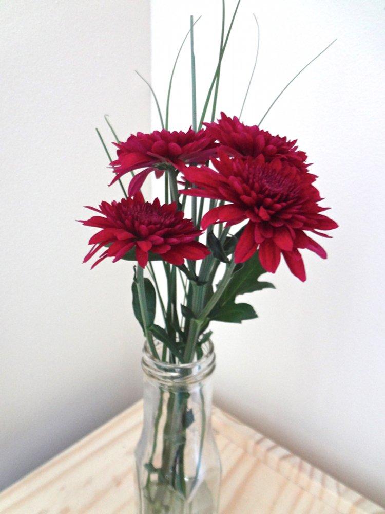 Aka bailey glass bottle vases new succulents for Flowers in glass bottles
