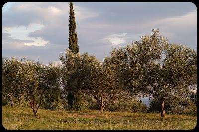 Fotografia krajobrazowa. Słowenia, Izola. fot. Łukasz Cyrus, Ruda Śląska