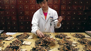World Travel Agency travel the World RTW -family activities Budget Travel Chinese Traditional Medicine