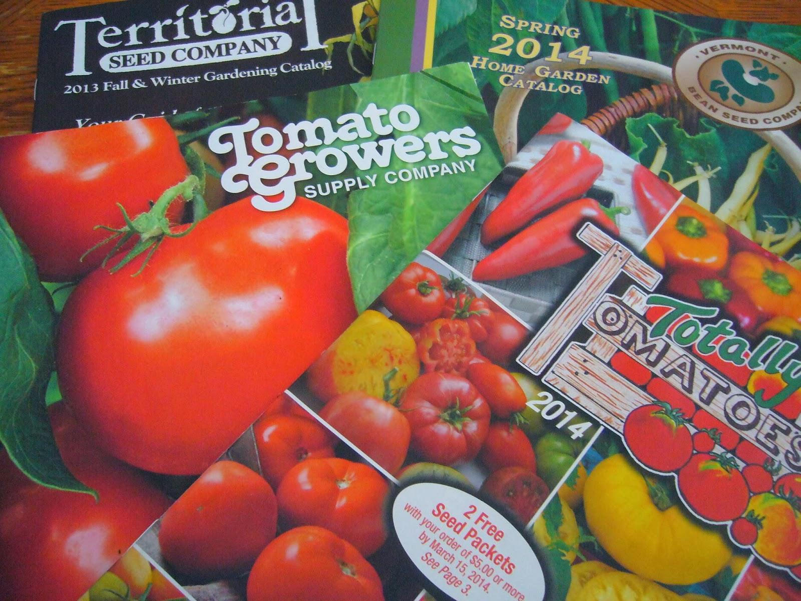 sacramento vegetable gardening the secret is out