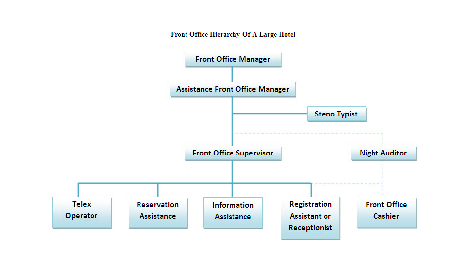 office hierarchy