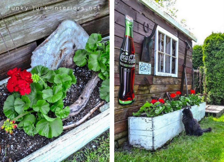 Hanging beds over water - Red Geraniums In A Flower Box In Front Of A Rustic Garden Shed