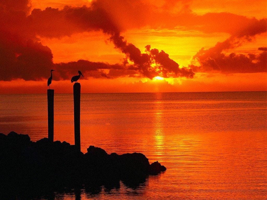 http://4.bp.blogspot.com/-UI4Lx5Ceyok/Ta42dvJm9cI/AAAAAAAAFWc/AXU6X1gvSFA/s1600/59_Florida_Keys_Largo_USA_freenature_landscapes_ocean_computerdesktopwallpaper_l.jpg