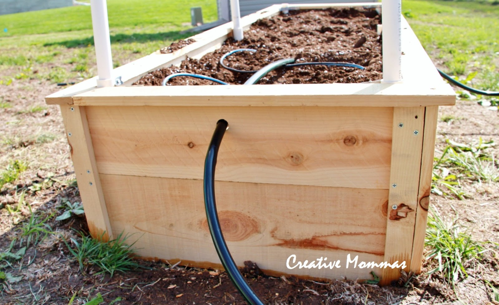 Creative mommas raised garden beds for Raised bed garden designs plans