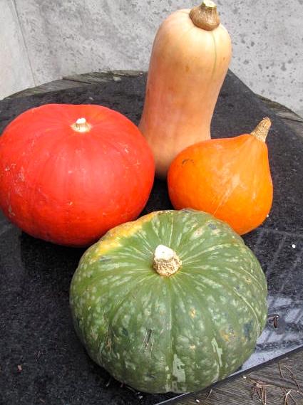 how to make pumpkin curry soup