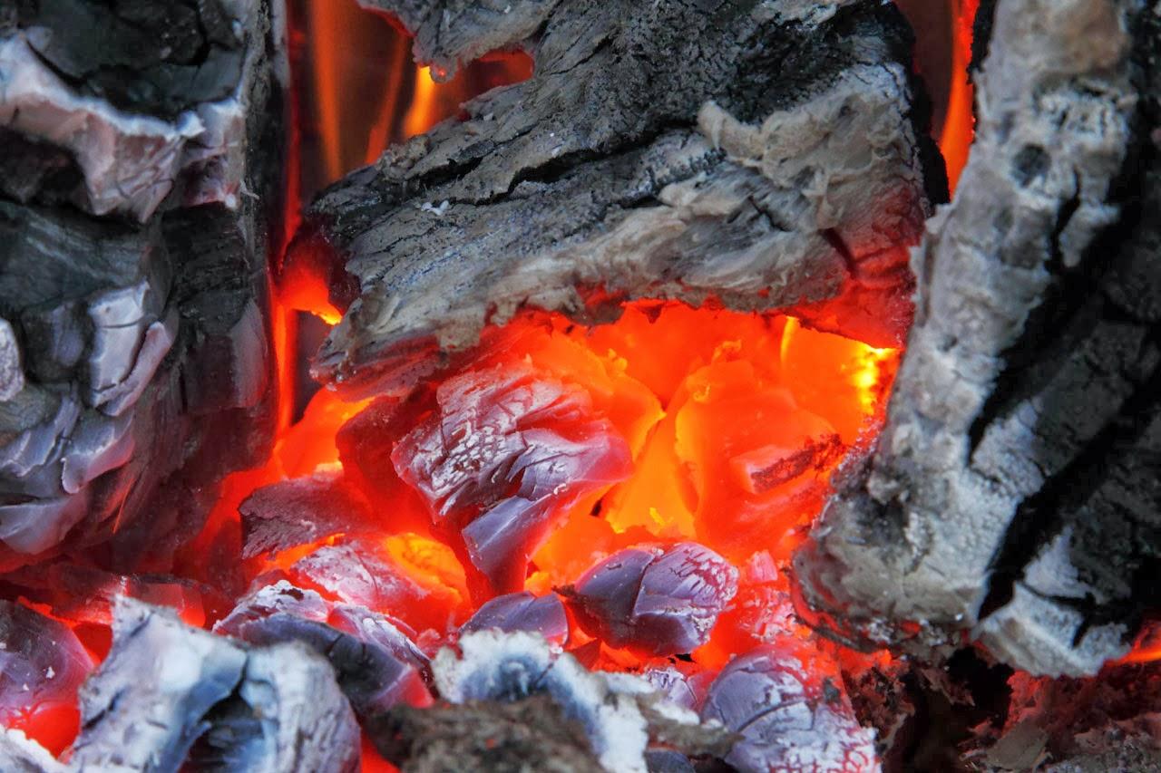 batu bara bisa dimakan