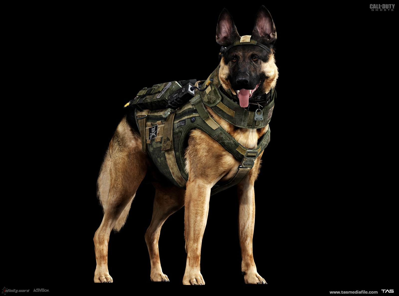 Call Of Duty Ghosts Riley