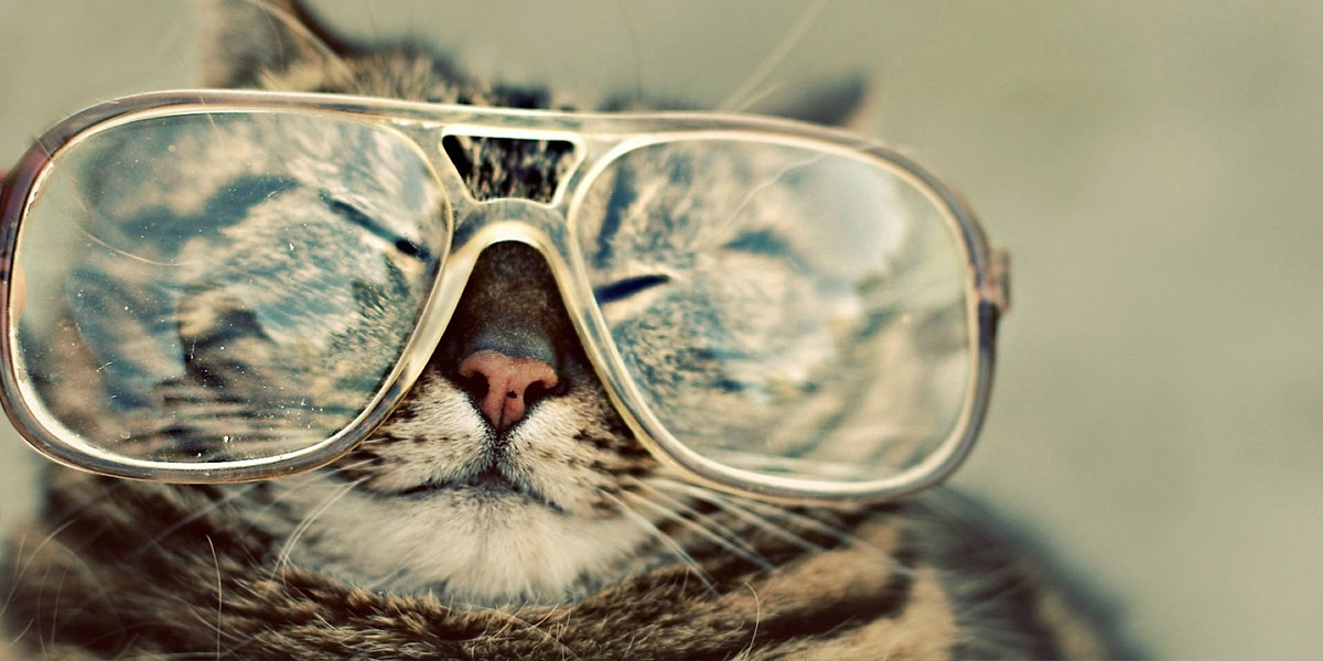 Glasses Hipster l 300+ Muhteşem HD Twitter Kapak Fotoğrafları