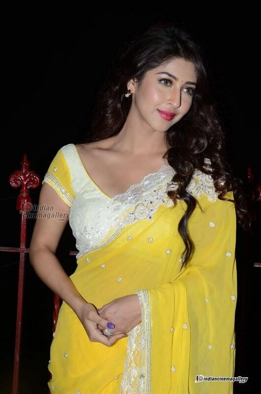 hot indian girl in saree