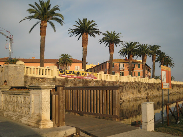 Palm trees in Orbetello Tuscany