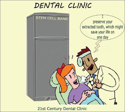 smile-sydney-dental-stem-cell-research