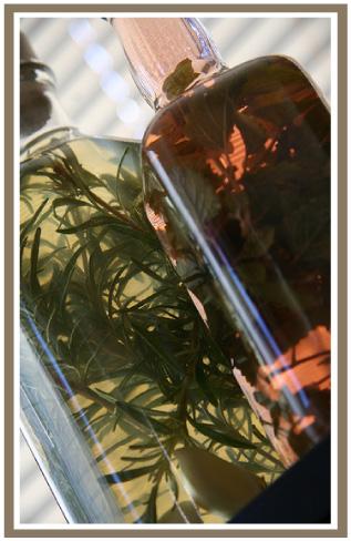 Resepi Hapus Kelemumur Herba Rosemary Cuka Epal Bagus Utk Menjaga Kebersihan Kulit Kepala