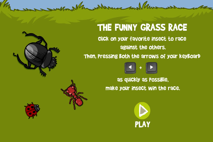 Kids Game : Insects Race