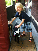 Blonde haired child pets goats