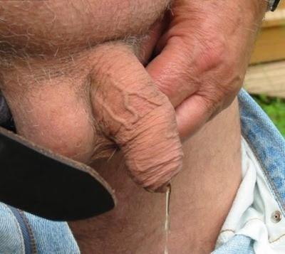 Quero esses caralhos todos adorava mama-los a todos
