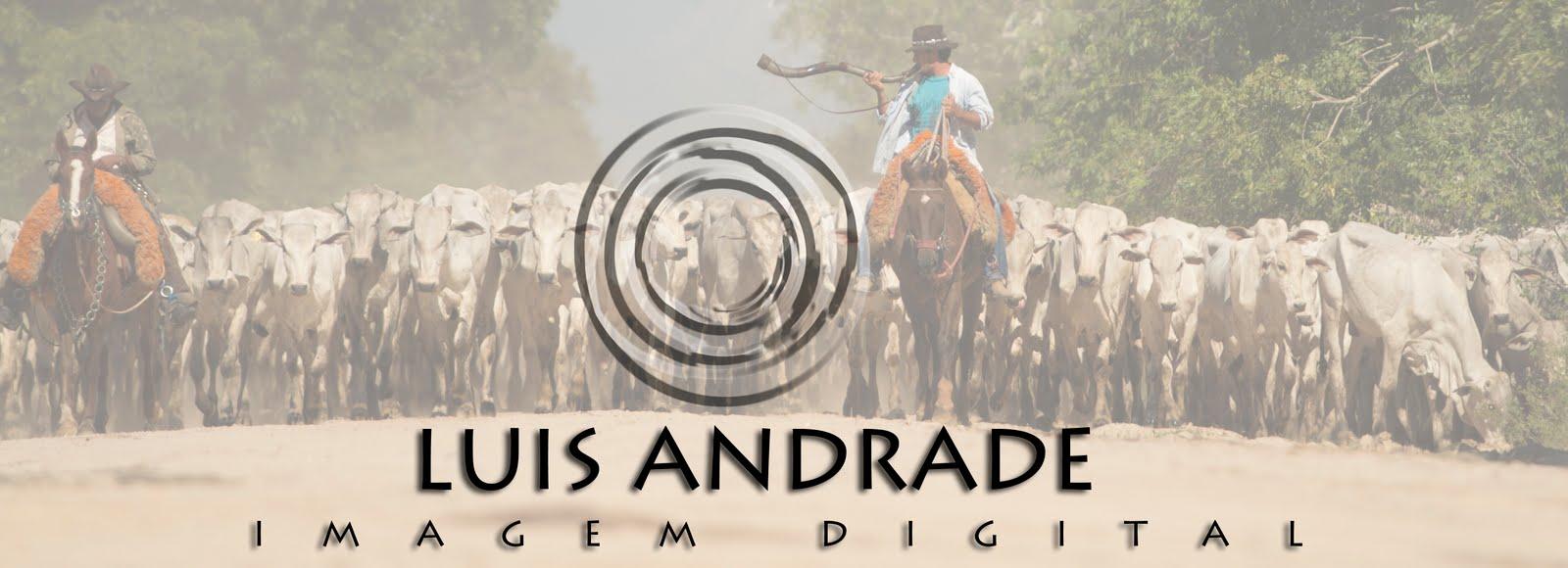 Luis Andrade - Fotógrafo
