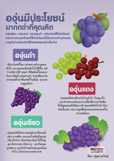 องุ่น (Grape) สรรพคุณมาก