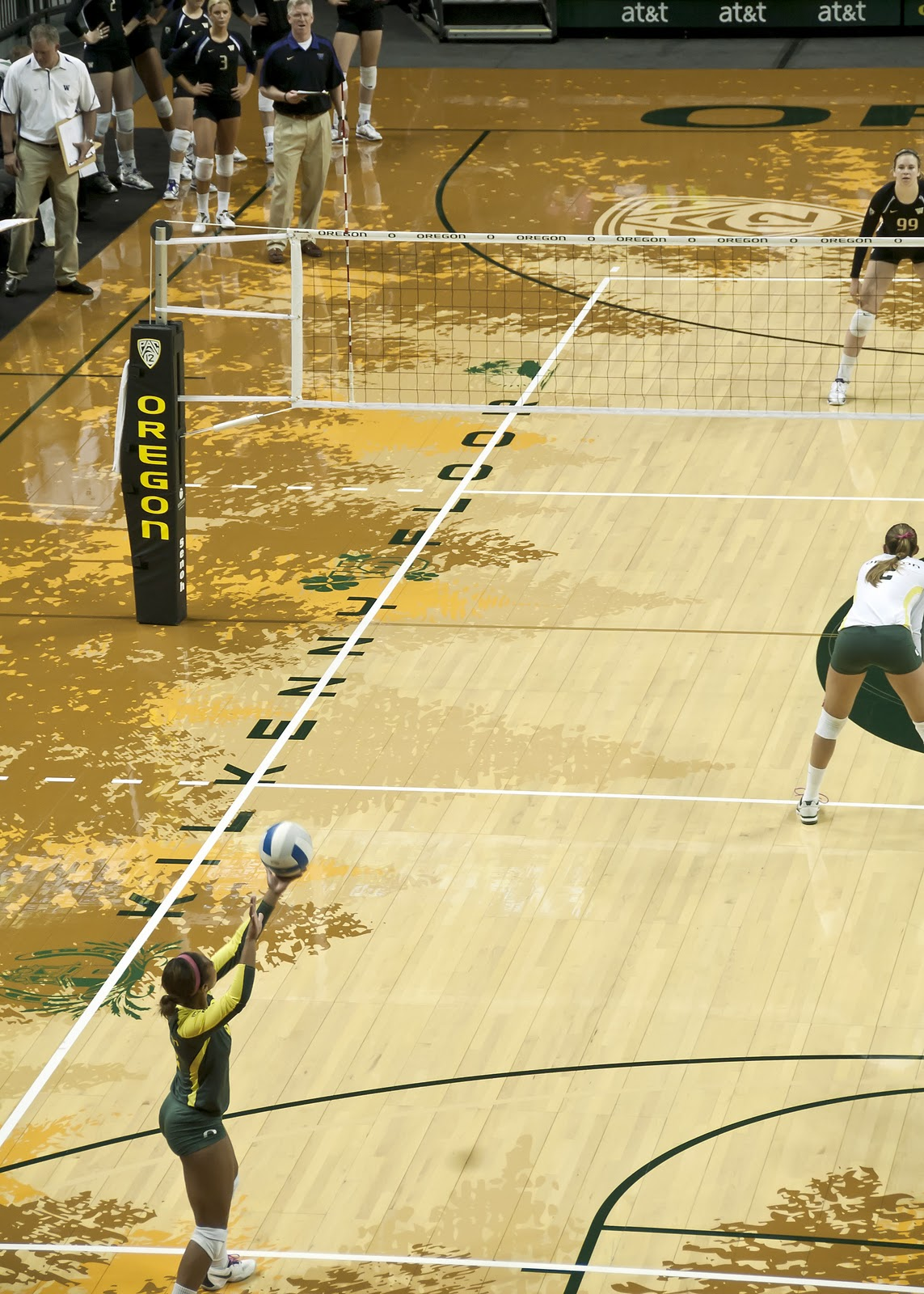Volleyblog Seattle How Does Oregon S New Arena Rate For
