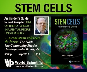 Learn more about stem cells