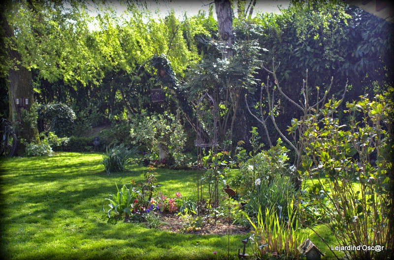 Le jardin d 39 oscar nettoyage de printemps for Nettoyage jardin printemps