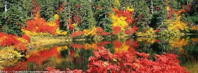 Belle couverture facebook : Le bel automne est revenu