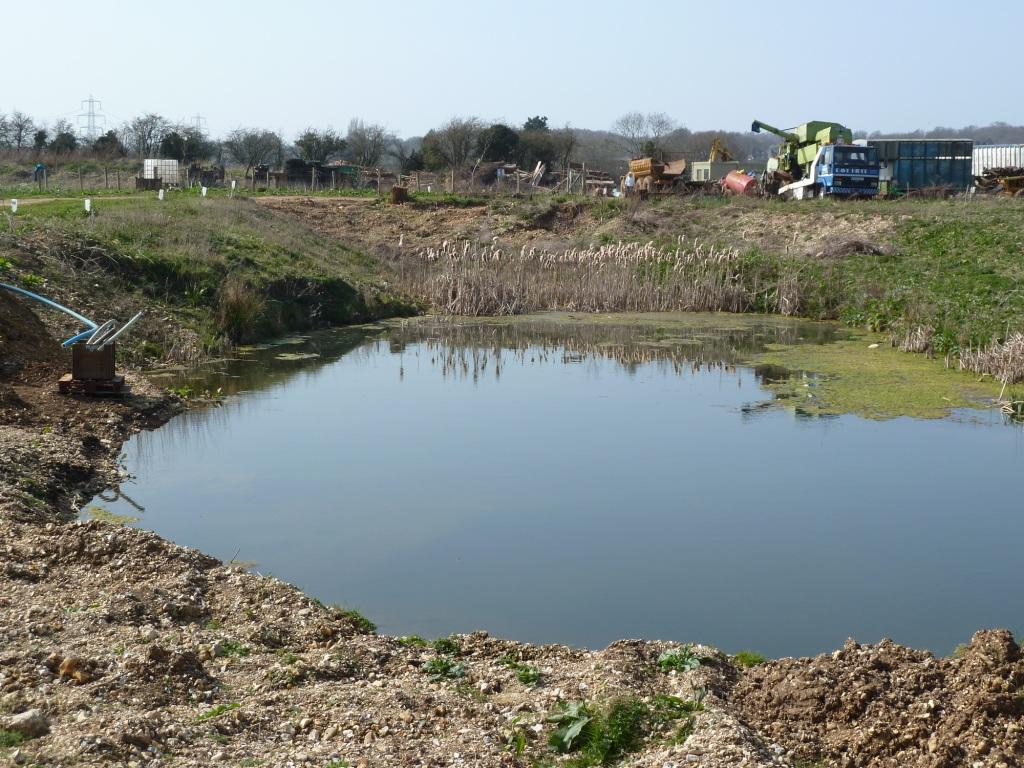 Dave hubble 39 s ecology spot diary of a farm pond march 2012 for Farm pond pumps