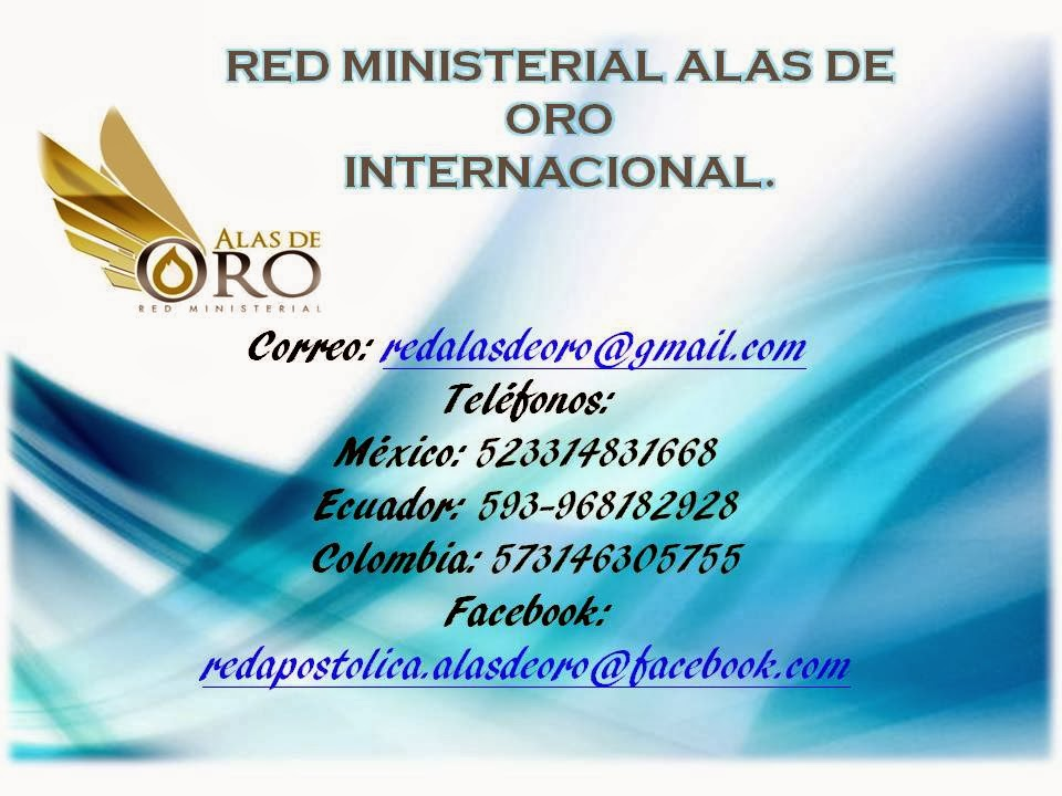 RED MINSTERIAL ALAS DE ORO INTERNACINAL