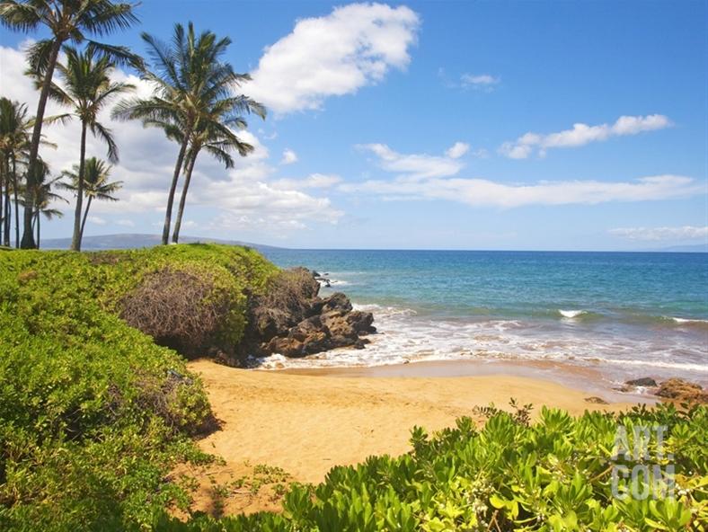 Kari Likelikes  Maui Secluded Beach Art Print