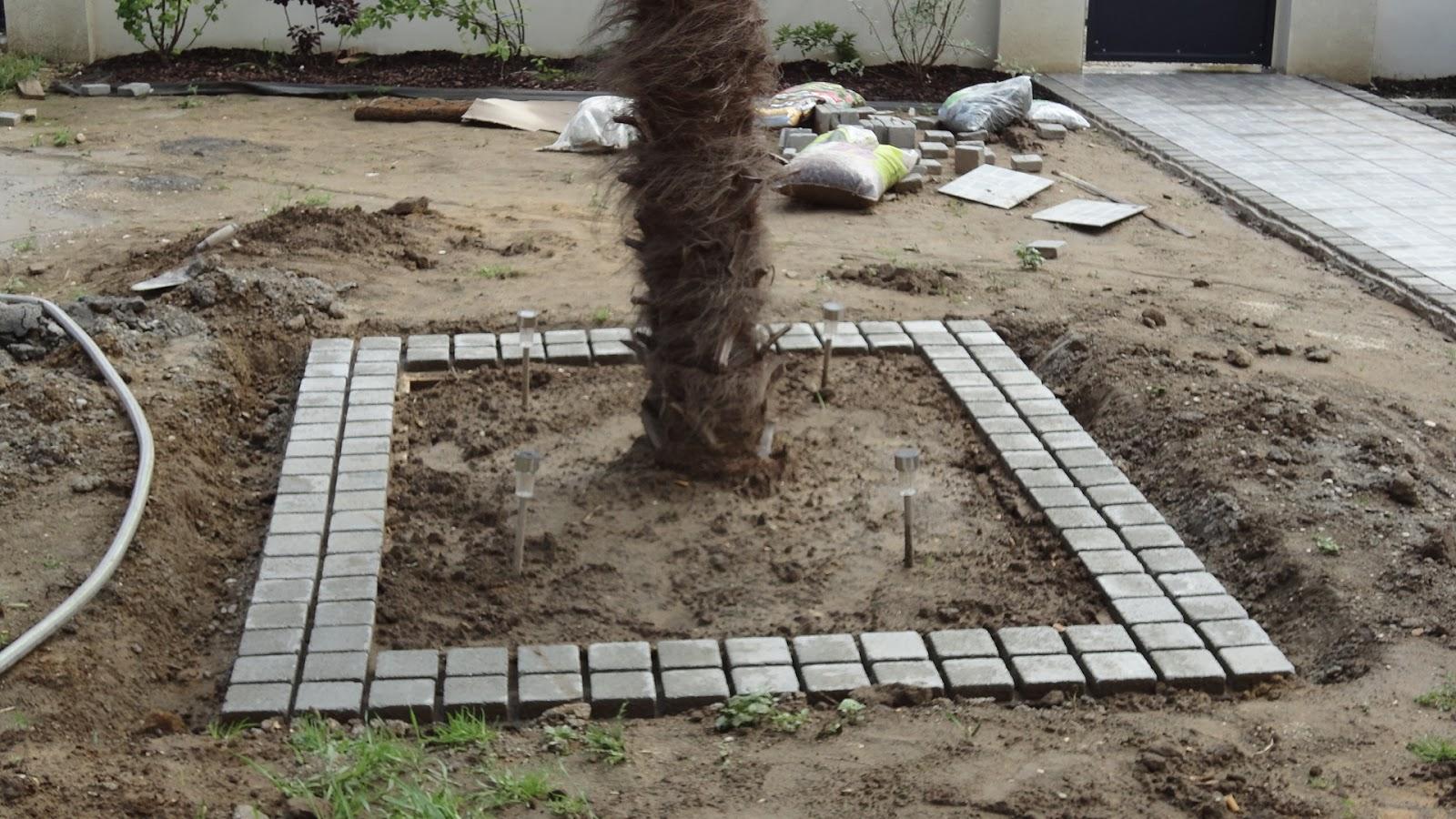Naissance dun jardin  une grande aventure  Aménagements