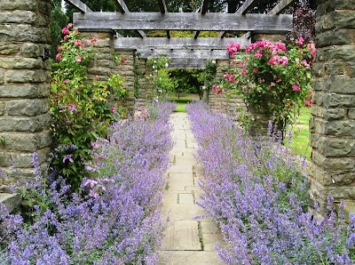Purple borders and climbing roses alongside a path