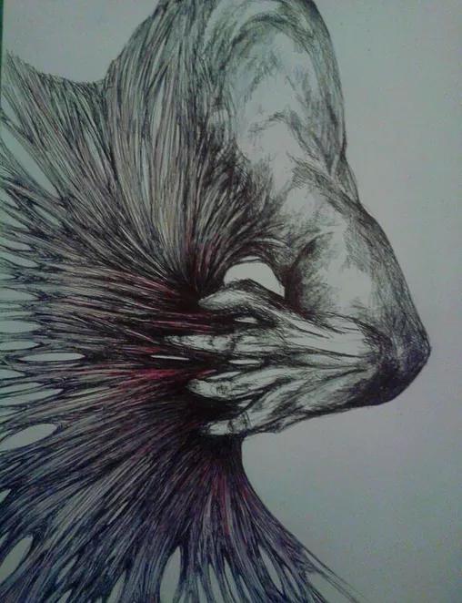 *Sigue al *Lobo