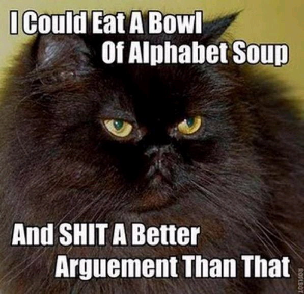 [Image: this_is_debate_kitteh_by_missndtown-d3emy71.jpg]