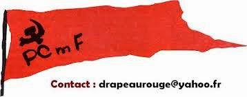 Parti Comuniste Maoïste de France