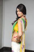 Kushi glamorous saree photos-thumbnail-12