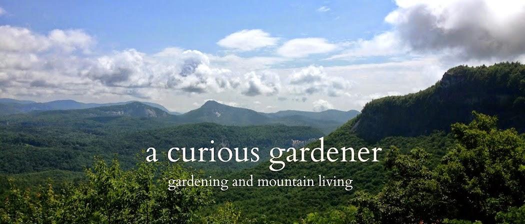 a curious gardener