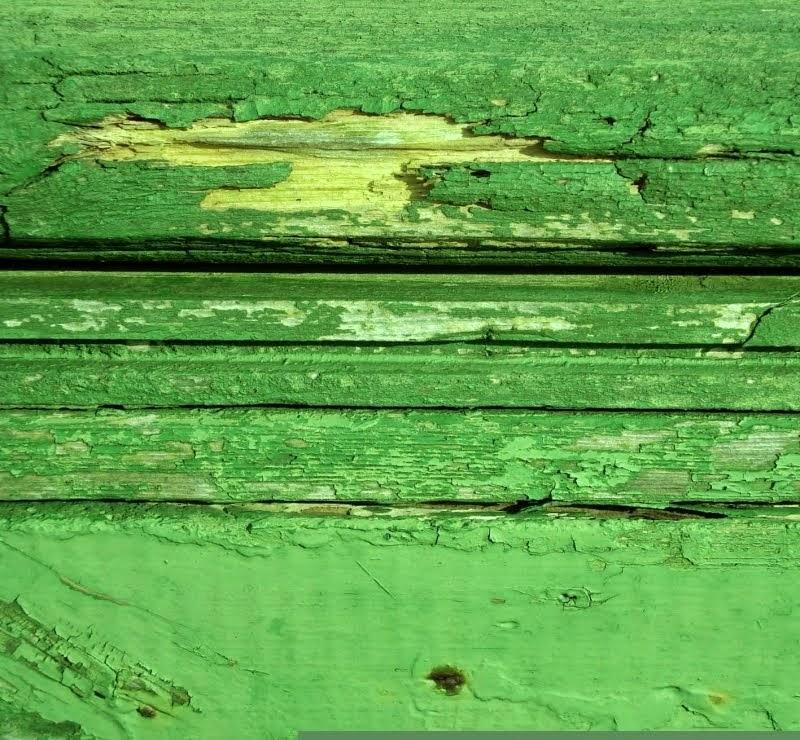 tørt træ på Ærø