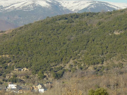 Monte del Sardonal