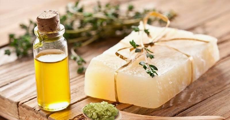 7 increíbles usos del aceite de árbol de té