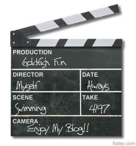 Goldfish Clapper Board