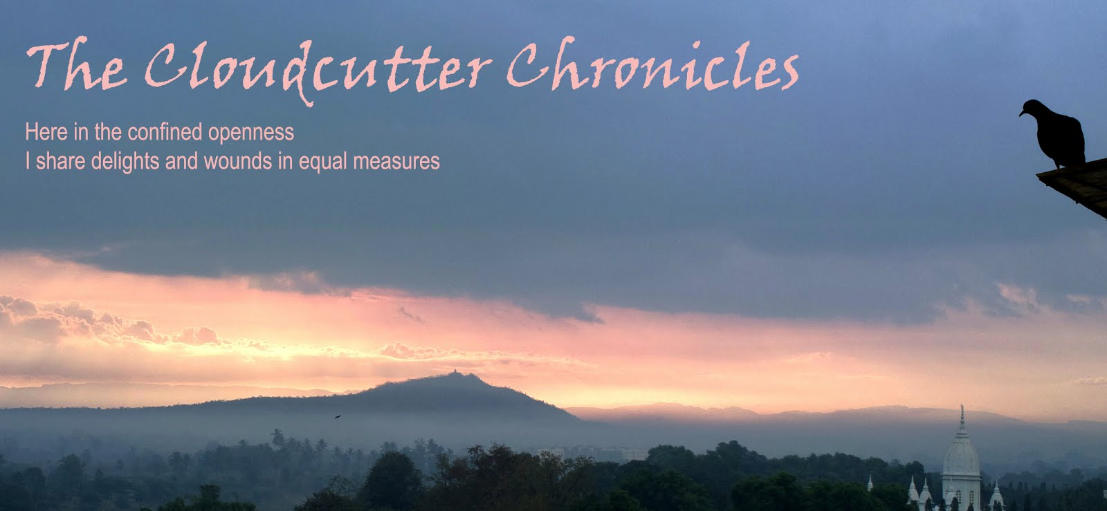 The Cloudcutter Chronicles