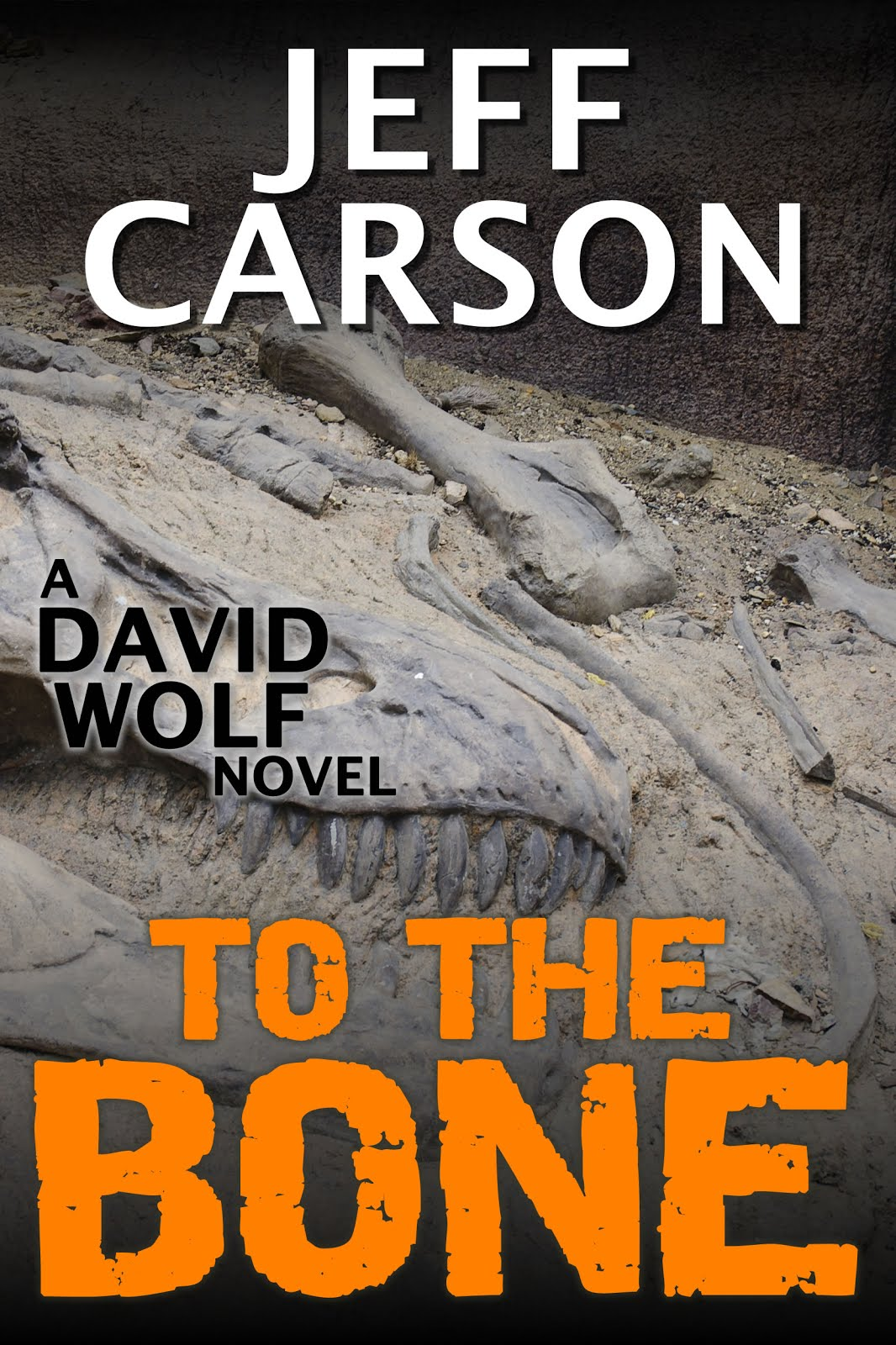 To the Bone (David Wolf Book 7)