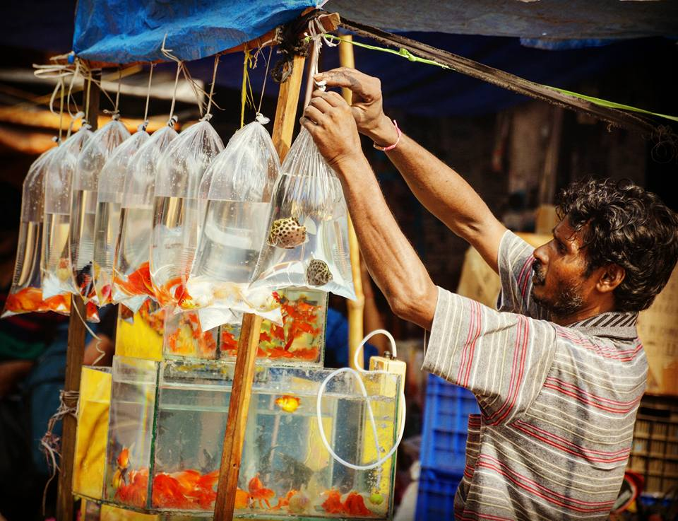 The flavour of Kolkata