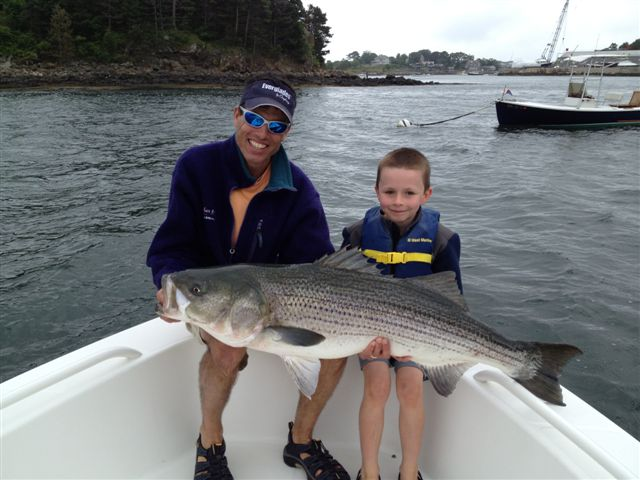 Boston fly fishing and report salem harbor 51 for Boston harbor fishing report