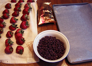 Bowl of Chocolate Bits, Dried Strawberries and Cookie Sheet with Waxed Paper