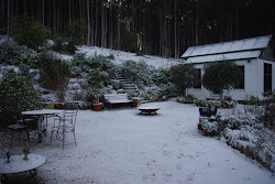 Fernglade Farm in mid winter during a rare heavy snowfall