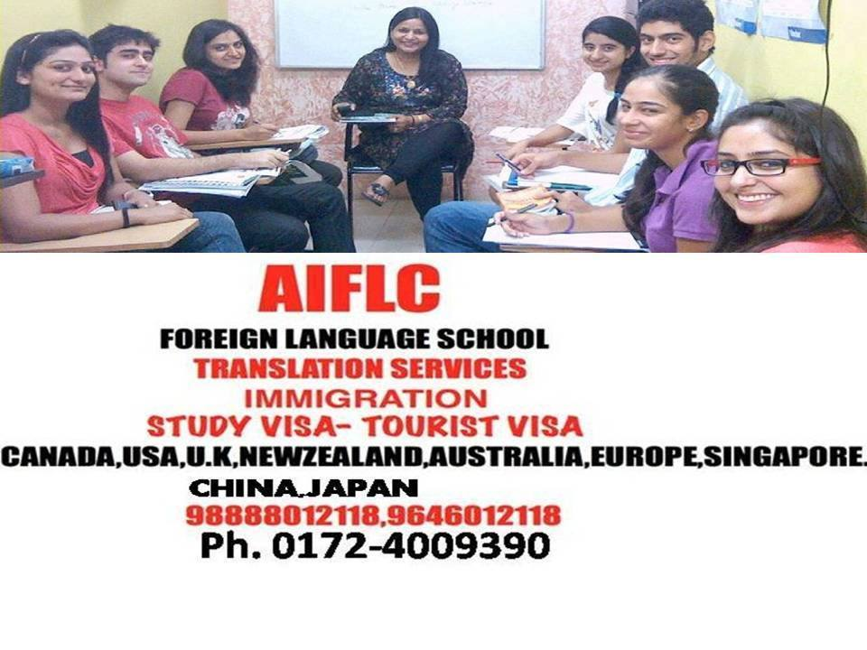 study visa,tourist visa,immigration,foreign language classes,Translation services in ludhiana-Punjab