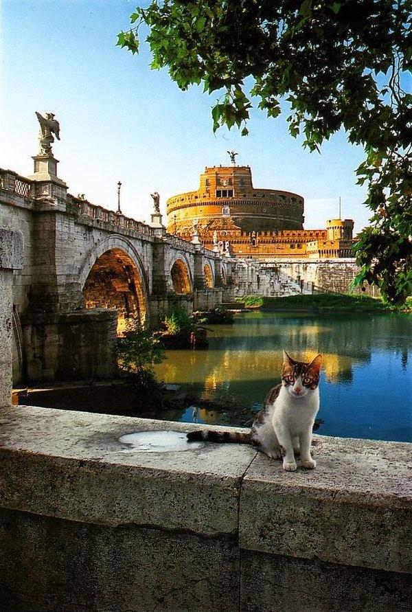 st angel's castle rome