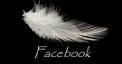 https://www.facebook.com/juliemorganbook?fref=ts